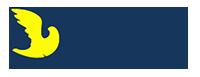 Autoescuela San Licer Logo